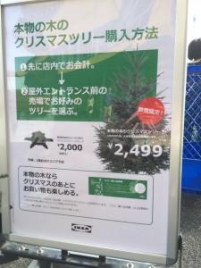 IKEAモミの木